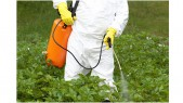 Dangers of Glyphosate