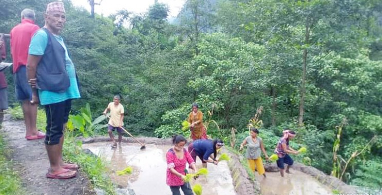 Covid surge halts normal life in West Sikkim