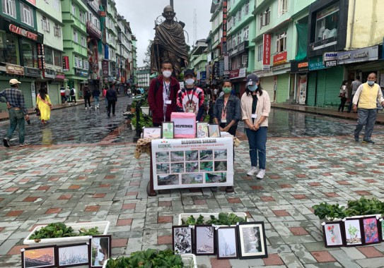 Blooming Sikkim fundraiser for Dzongu